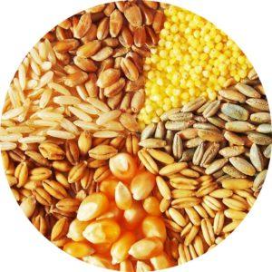 Зерно, зернобобовые